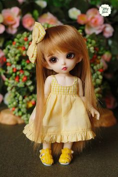 ♥ Condition: New  ♥ Package:  1 Dress  1 Hairclip    There are Pre-order items. We must take 1-3 weeks for making, depend on quantity of orders at