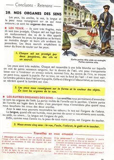Manuels anciens: Orieux, Everaere, Leçons de choses CE (1952) French Expressions, Science, Biology, Islam, Teaching, Learn French, French Nails, Textbook, Verb Words