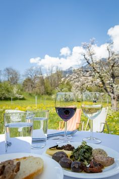 Ausflugstipp: Diese schöne Weinbergrunde von Malans nach Jenins ist Teil des Bündner Weinwanderwegs. Die Wanderung durch die Weinberge der Bündner Herrschaft lässt sich gut mit einem kulinarischen Halt in einem der Torkel (Weinkeller) oder Gasthäuser in den Weinbaudörfern kombinieren. Alcoholic Drinks, Wine, Glass, Wine Vineyards, Wine Cellars, Switzerland, Viajes, Tips, Nice Asses