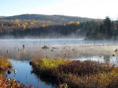 L'étang aux Cerises