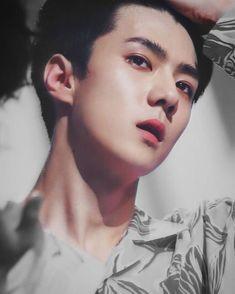 Oh Sehun. this man! Chanyeol Baekhyun, Exo Kai, Park Chanyeol, Hunhan, Exo Ot12, Disneyland, Shinee, Kim Minseok, Do Kyung Soo