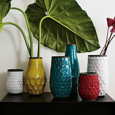 Hive Vases #WestElm - the vases are okay, but I especially like the yellow one paired with the big leaves.  So pretty.