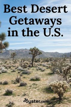 A trip to one of the desert towns in the U.S. can provide relief with skin-warming sun and cacti as far as the eye can see. Though summers in these locales can be a bit too sweltering, the typically mild winters make them suitable travel destinations. We'