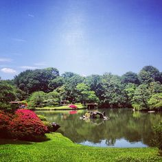 Rikugien Garden in Tokyo  六義園