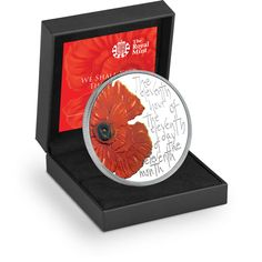 The Remembrance 2013 Alderney £5 Silver Proof Coin