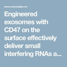 Engineered exosomes with CD47 on the surface effectively deliver small interfering RNAs agains mutated version of KRAS (G12D) into pancreatic ductal adenocarcinoma cells. [Nature, 2017]