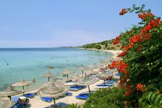 Photo about Chalkidiki is a wonderful peninsula in Greece with beautiful beaches and clear sea. Image of dancing, summer, holiday - 4522808 Dance Images, Amazing Sunsets, Beautiful Beaches, Flyer Design, Greece, Royalty Free Stock Photos, Villa, Holiday, Plants