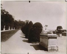 Jardins de Versailles - Atget (1857-1927)