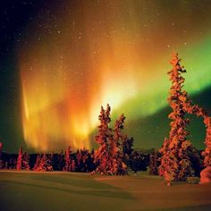 "Aurora Borealis - Alaska. The locals would call this red-orange borealis ""fire in the sky."""