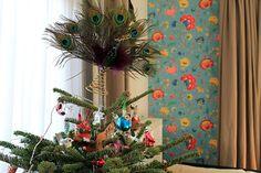 Dina Fragola: Before Christmas