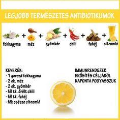 antibiotikumok Healing, Herbs, Fruit, Food, Alternative, Essen, Herb, Meals, Yemek