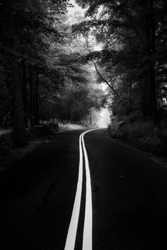 ideas black and white nature photography trees monochrome Or Noir, Black And White Aesthetic, Foto Art, Black And White Pictures, Black Picture, Black And White Photography, Monochrome Photography, Scenery, World