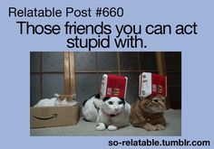 Those friends you can act stupid with.  「If you enjoy my posts, please give a…