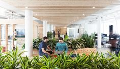 greenery - green - plants - planters - collaboration - commercial office inspiration