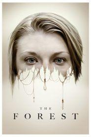 Başrollerinde Game Of Thrones izleyenlerin aşina olduğu Natalie Dormer'ın oynadığı ormanda geçen bir korku hikayesi.  Orman izle tek parça