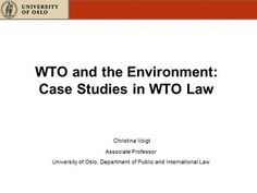 WTO and the Environment: Case Studies in WTO Law Christina Voigt Associate…