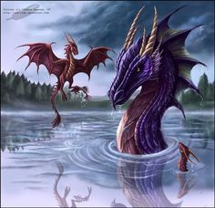 Dragons, dragon, drachen