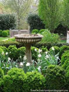 Garden with bird bath. | Dering Hall Landscape Garden