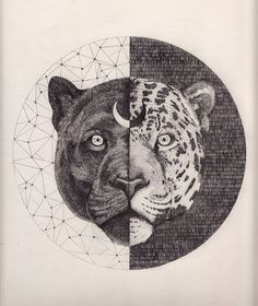 sacred geometry, moon, tiger, digital art