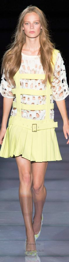 FAUSTO PUGLISI Collection  Spring 2015 Ready to Wear