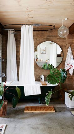 Why You Should Get In On The Shower Plant Trend