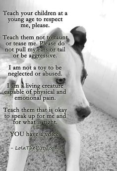 All animals, not just dogs ♡
