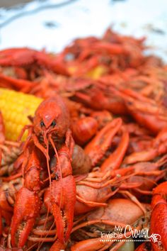 Looking for Fast & Easy Appetizer Recipes, Main Dish Recipes, Seafood Recipes, Side Dish Recipes! Recipechart has over free recipes for you to browse. Find more recipes like Perfect Crawfish Boil. Crawfish Recipes, Cajun Recipes, Seafood Recipes, Appetizer Recipes, Cooking Recipes, Cajun Food, Seafood Boil, Seafood Dishes, Kitchens