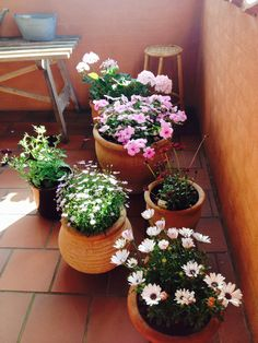 Min terrasse