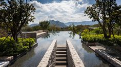 Image 2 of 54 from gallery of Botanica Khao Yai / Vin Varavarn Architects. Photograph by Spaceshift Studio