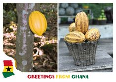 Greetings from ghana ghana postcards online and vacation m4hsunfo Gallery