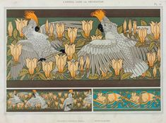 """Design for wallpaper border """"Cockatoo and Magnolia"""" and White Mice"""" from 'L'Animal dans la Decoration' by Maurice Pillard Verneuil, pub. 1897 (colour lithograph), Verneuil, Maurice Pillard / Private Collection / The Stapleton Collection / Bridgeman Images Free Illustrations, Illustration Art, Decoration, Art Decor, Design Art Nouveau, Magnolia, Art Populaire, Art Deco Movement, Art Vintage"""