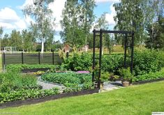 trädgårdsland,grönsaksland,grönsaksodling,odling,odlingslådor,spaljé,grusläggning,trädgård