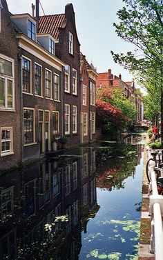 Houses by the canal in Delft, Netherlands