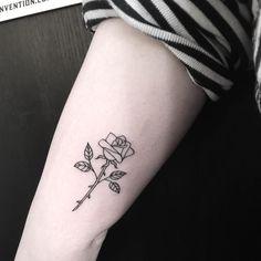 """4,633 gilla-markeringar, 6 kommentarer - missemilymalice@gmail.com (@emilymalice) på Instagram: """"Young rose bloom on Mathilda, Thankyou! """""""