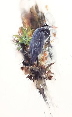 Wildlife Art, Original Paintings, Contemporary Artwork, and Giclee Prints by Morten E. Solberg