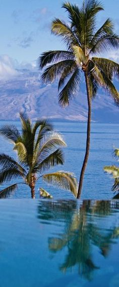 Wailea, Maui, Hawaii by MyohoDane