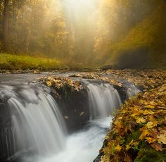 **  Silver Falls - Oregon