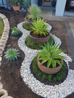 Big Potted Plants, Outdoor Plants, Outdoor Gardens, Small Gardens, Modern Gardens, Outdoor Garden Decor, Zen Gardens, Diy Garden Decor, Rock Garden Design