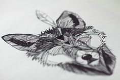 fox, drawing, illustration, structure, feather, lines