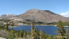 2014 Tioga Pass, Inyo National Frorest, Tioga Lake