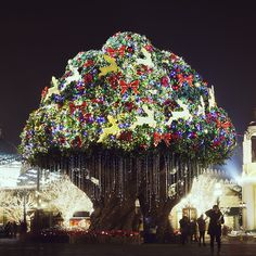 Christmas in Seoul, Korea