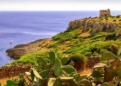 7 Nächte von Abenteuern in Apulien träumen – inkl. Flug, Hotels mit Frühstück/Halbpension, Weinverkostung, Besichtigungen & Extras