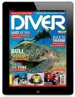 Divernet – Diver Magazine Online #diving, #scuba, #scuba, #diver, #diver #magazine, #underwater, #sub #aqua, #news, #holidays, #dive, #travel, #divernet, #divernet, #uk #diving, #british, #europe, #destinations, #tests, #snorkelling, #snorkeling, #bsac, #