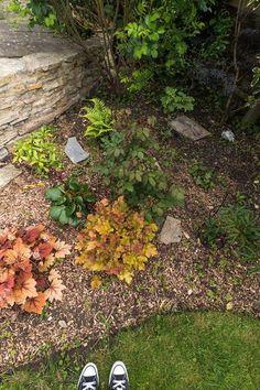 Jill Orme Stepping Stones, Outdoor Decor, Home Decor, Seeds, Stair Risers, Decoration Home, Room Decor, Interior Design, Home Interiors