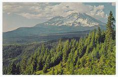Postcards - United States # 410 - Mount Shasta, California