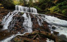 Download wallpapers Mohawk Falls, waterfall, forest, rock, autumn, Ricketts Glen State Park, Pennsylvania, USA