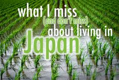 What I Miss (and Don't Miss) About Living in Japan   Surviving in Japan: (without much Japanese)