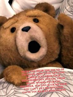 'Magic Mike,' 'Ted' Defy Expectations with Big Midnight Box Office Ted Bear, Teddy Bear Pictures, Magic Mike, Bear Wallpaper, Movie Photo, Animal Quotes, Good Movies, Cartoon Characters, Cute Animals