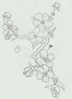 Tattoo Watercolor Cherry Blossom Water Colors Ideas For 2019 Cherry Blossom Drawing, Cherry Blossom Flowers, Cherry Blossom Watercolor, Art Floral, Fabric Painting, Painting & Drawing, Blossom Tattoo, Doodle Art, Flower Art