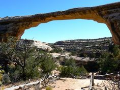 Fighting a Fear of Heights at Natural Bridges National Monument